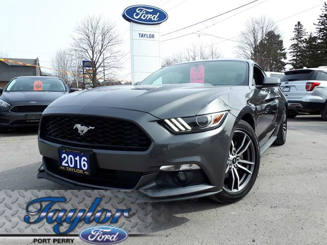 2016 Ford Mustang EcoBoost *1 OWNER* *MANUAL TRANSMISSION* in Port Perry, Ontario