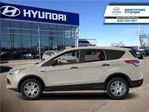 2013 Ford Escape SEL - Leather Seats -  Bluetooth in Brantford, Ontario