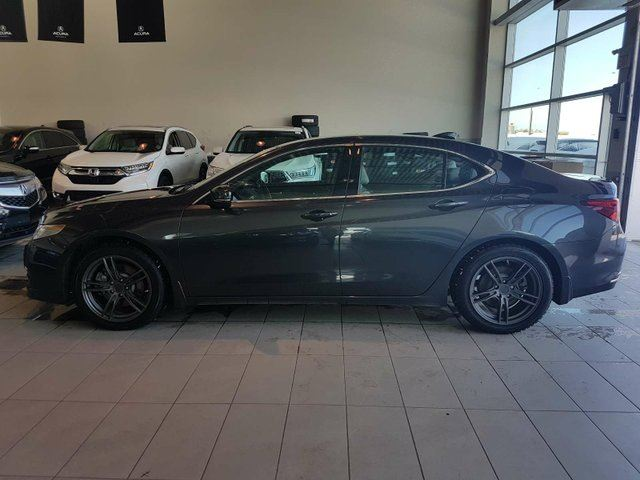 2015 ACURA TLX Elite - Heated Leather, B/U Cam + Sunroof! in Red Deer, Alberta