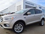 2017 Ford Escape SE 4dr 4x4 in Peace River, Alberta