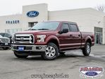 2016 Ford F-150 XLT in Cobourg, Ontario