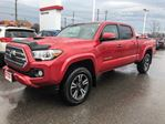 2016 Toyota Tacoma   DOUBLE CAB TRD! in Cobourg, Ontario