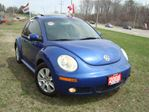 2008 Volkswagen New Beetle Trendline Only 109km Leather in Cambridge, Ontario