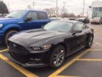 2017 Ford Mustang 2dr Fastback EcoBoost Premium in Mississauga, Ontario