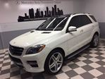 2015 Mercedes-Benz M-Class ML550 4MATIC Designo Advanced Driving Night View+ in Calgary, Alberta