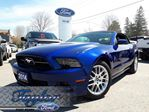 2014 Ford Mustang V6 Premium *1 OWNER* *MANUAL* in Port Perry, Ontario