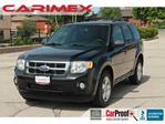 2011 Ford Escape XLT Automatic V6   Bluetooth   4x4   Leather   Sun in Kitchener, Ontario