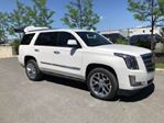 2017 Cadillac Escalade Platinum, 6.2L V8, Excess Wear & Tear Protection in Mississauga, Ontario
