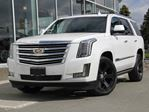 2018 Cadillac Escalade Platinum 4dr 4WD Sport Utility Vehicle in Kamloops, British Columbia