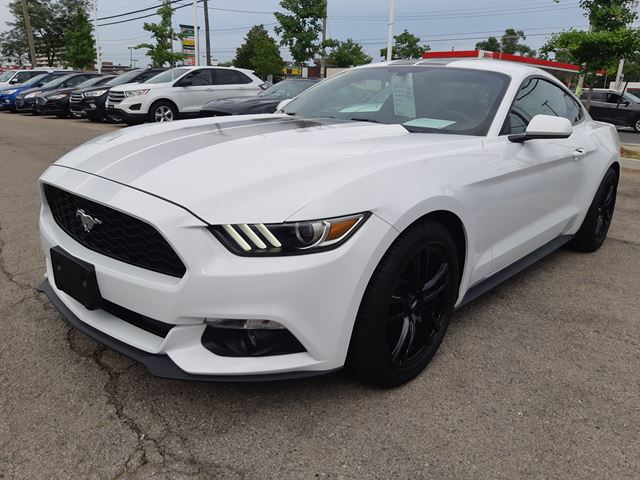 2017 FORD Mustang EcoBoost in Hamilton, Ontario