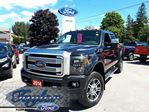 2014 Ford F-350  PLATINUM *LEATHER**NAV**SUNROOF* in Port Perry, Ontario