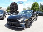 2019 Ford Mustang EcoBoost in Port Perry, Ontario