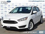 2016 Ford Focus SE - Bluetooth -  Sync - Low Mileage in Welland, Ontario