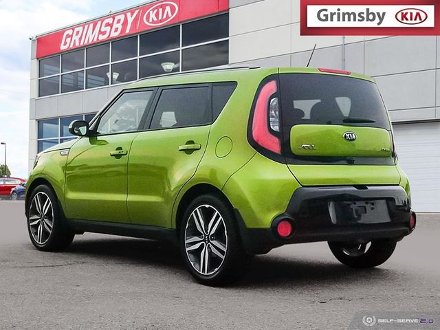 review dog kia green golden with drivekia woofs friendly rides soul alien