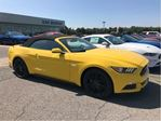 2017 Ford Mustang GT Premium in Ottawa, Ontario