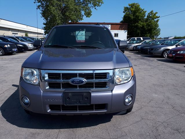 2008 FORD Escape XLT in Hamilton, Ontario