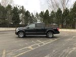 2016 Ford F-150 XLT FX4 in Cayuga, Ontario