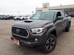 2019 Toyota Tacoma TRD Sport in Lindsay, Ontario