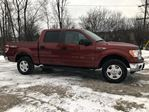 2014 Ford F-150 XLT in Perth, Ontario