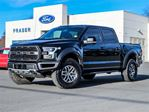 2017 Ford F-150 Raptor in Cobourg, Ontario
