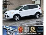 2015 Ford Escape SE in Winnipeg, Manitoba