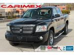 2008 Dodge Dakota SXT CERTIFIED in Kitchener, Ontario
