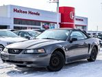 2004 Ford Mustang Deluxe Convertible in Burlington, Ontario