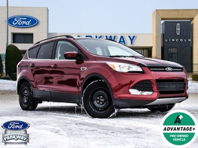 2014 Ford Escape SE in