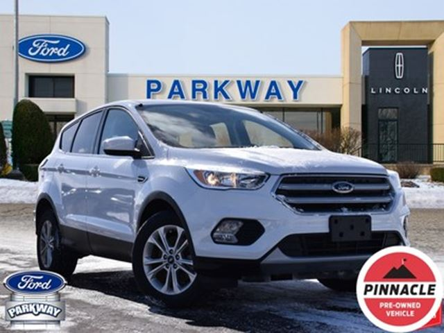 2017 Ford Escape SE in