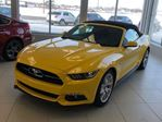 2015 Ford Mustang SOLD SOLD SOLD GT 50th Anniversary Convertible in St George Brant, Ontario