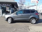 2013 Ford Escape SE 4X4 LEATHER AND POWER  HATCH in Welland, Ontario