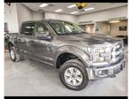 2015 Ford F-150 XLT in Winnipeg, Manitoba