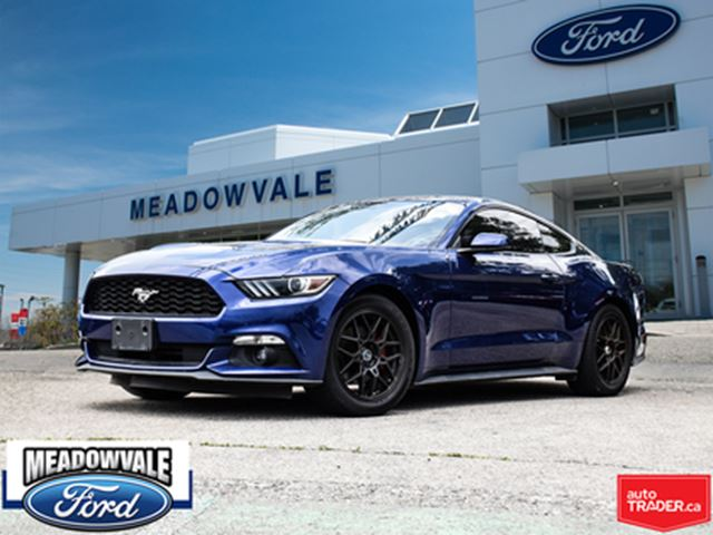 2016 FORD Mustang ECOBOOST PRIMIUM,LEATHER,NAVIGATION in Mississauga, Ontario