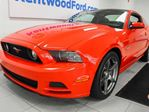 2014 Ford Mustang GT 5.0L RWD rocket. heated power leather seats. Sunroof. in Edmonton, Alberta