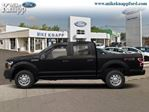 2019 Ford F-150 XLT - Navigation in Welland, Ontario