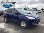 2013 Ford