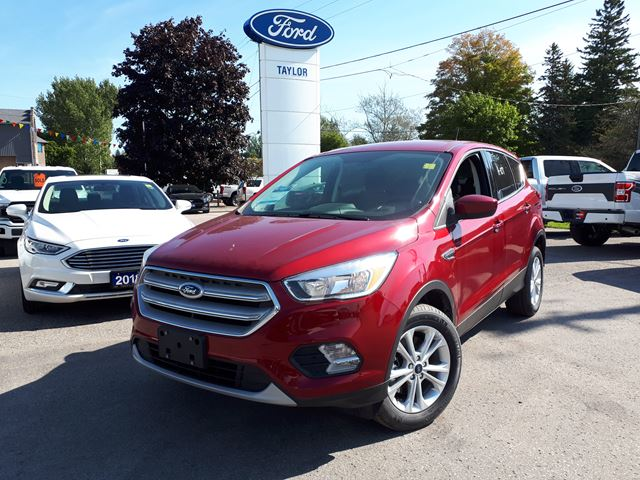 2019 FORD Escape SE in Port Perry, Ontario