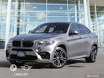 2017 BMW X6           in Langley, British Columbia