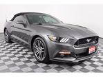 2016 Ford Mustang GT, RWD, 5.0L 8cyl, 2-Dr, 6 speed manual, backup c in Huntsville, Ontario