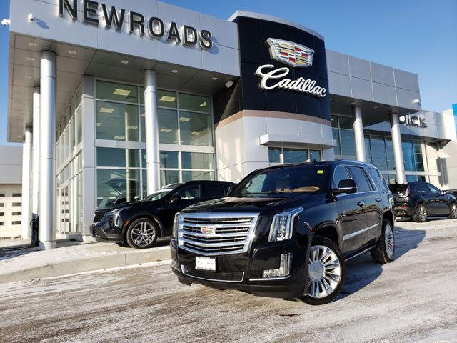 2017 CADILLAC ESCALADE Platinum 4X4 | CLEAN CARFAX | HEATED STEERING | HEATED LEATHER | NAV in Newmarket, Ontario