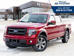 2014Ford