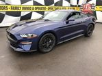 2019 Ford Mustang EcoBoost, Automatic, Back Up Camera, Only 3,000km in Burlington, Ontario