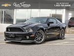 2011 Ford Shelby           in Ottawa, Ontario