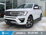 2019 Ford Expedition XLT 4X4 LEATHER LOADED BEAUTIFULLY REDESIGNED in Edmonton, Alberta