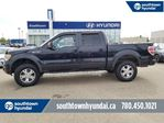 2010 Ford F-150 FX4/LEATHER/ROOF/NEW TIRES/5.4L in Edmonton, Alberta
