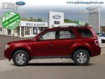 2012 Ford Escape FWD 4dr XLT in Welland, Ontario